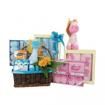 Baby Girl or Boy Hamper